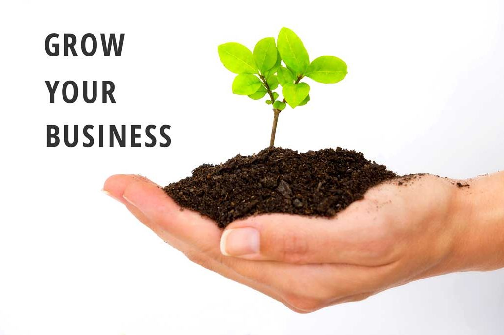 Q Academy Grow Your Business Consulting Services